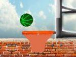Basketball Hoops Fun
