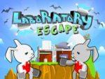 Laboratory Escape
