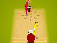 IPL Cricket Ultimat