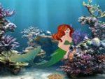 Release The Mermaid