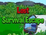 Lost Survival Escape