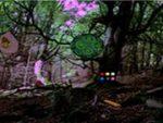 Ancient Forest Escape