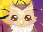 Owl Care